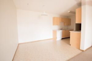 FREE DEC RENT! Spacious 2 Bed in Lakewood with in-suite laundry!