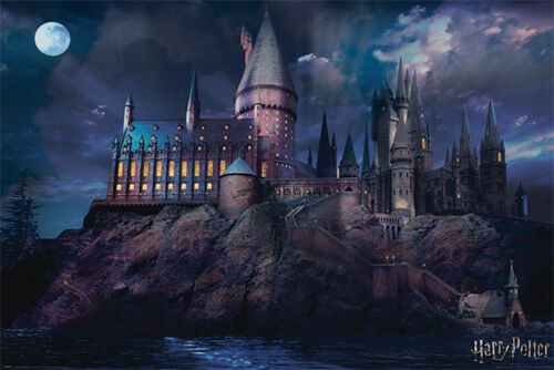 HARRY POTTER - HOGWARTS POSTER 24x36 - 4369