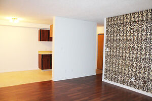 BACHELOR, APARTMENT  FOR RENT