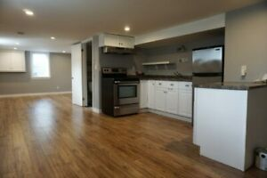 Newly Updated Lower Level Unit Close to Downtown + Amenities