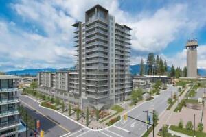 703 9393 TOWER ROAD Burnaby, British Columbia