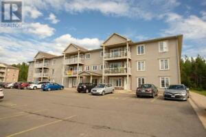 170 Valcour Drive Unit# 316 Fredericton, New Brunswick