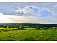Land , plot , field for sale