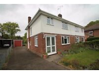 Maiden Erleigh Catchment off Wokingham Rd spacious 3 bedroom semi-detached house to Rent