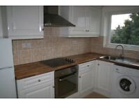 LARGE ONE BEDROOM FLAT IN GOOD CONDITION NEAR STATION. SEE PICS THEN CALL 0208 459 4555