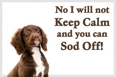 Brown Sprocker Cocker Spaniel Dog Funny Fridge Magnet birthday or christmas gift