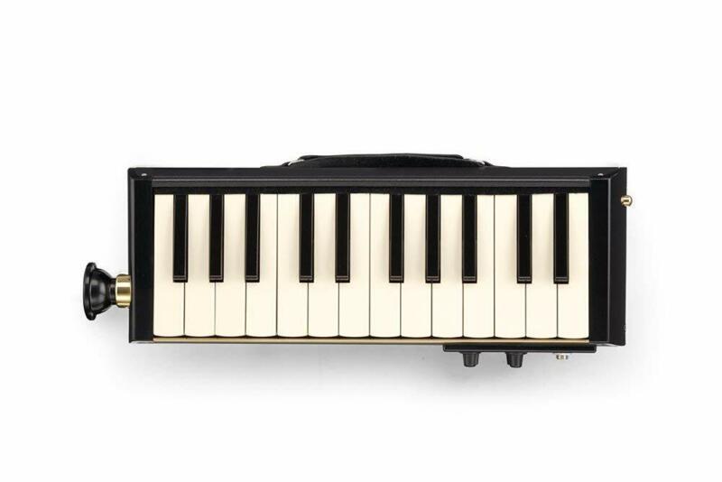 HAMMOND Hammond PRO-24B keyboard harmonica acoustic guitar bus model EMS