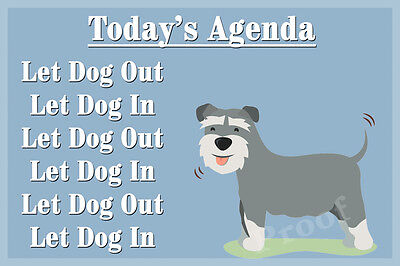 Schnauzer pet Dog Funny Fridge Magnet Birthday Gift for friend or family