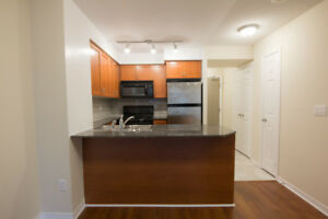 Bay & Wellesley:  One Bedroom Apartment Available