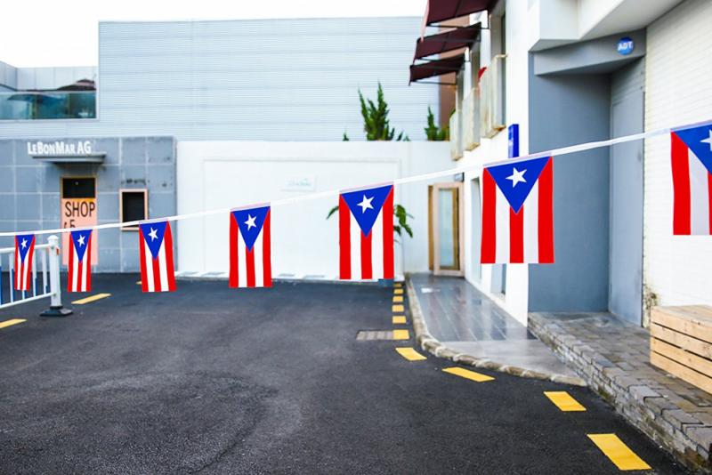 Puerto Rico Banderas Para Fiestas Puerto Rican Flag 100Feet//Banner Flags Party
