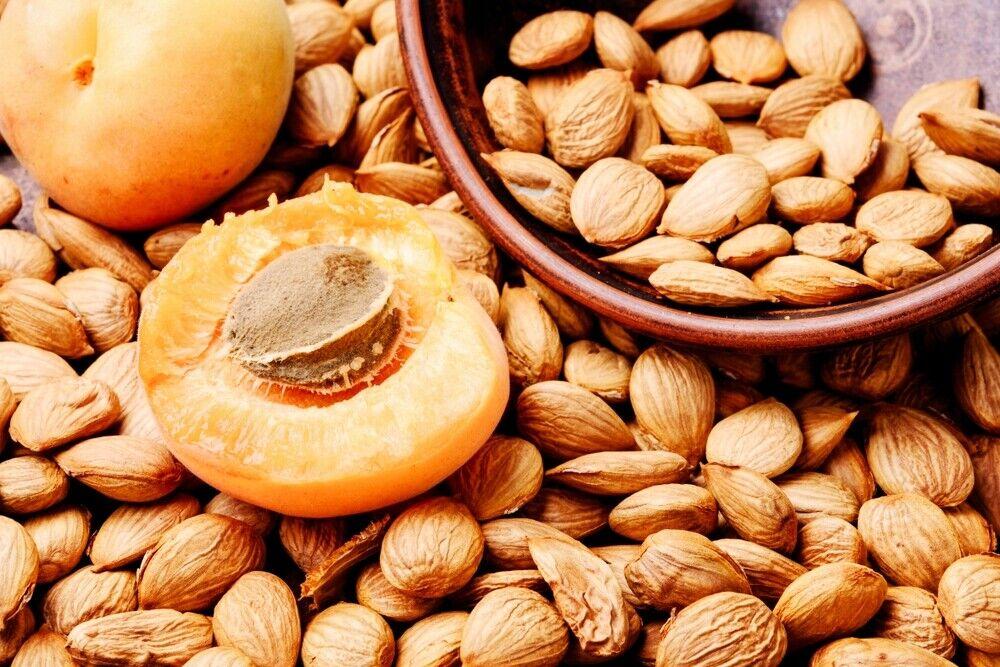 1 Kg Aprikosenkerne BITTER Aprikosen Kerne B17 Naturbelassen Top Qualität 1000g