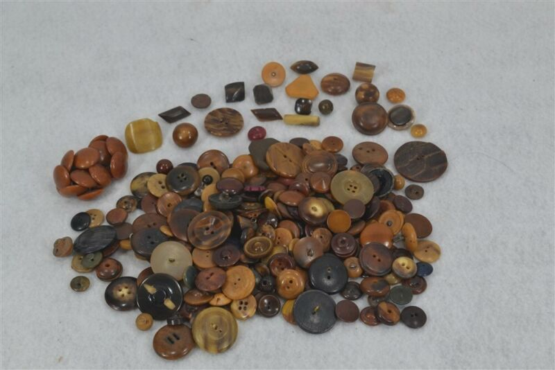 sewing buttons vegetable lot 12 oz Victorian Edwardian matching 19th c antique