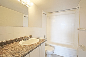 All-Inclusive 1 Bed 1 Bath on Margaret Ave! Kitchener / Waterloo Kitchener Area image 9