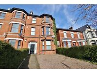 One bedroom fully furnished apartment Antrim Rd area