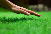 Left your lawn ready for winter, grass cutting and more