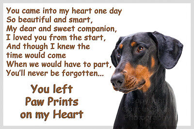 Doberman Dobie Dog Pet loss Bereavement  Gift Paw Prints on heart fridge magnet