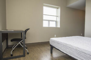 Walking distance to Laurier! WIFI Included! Pet-friendly!