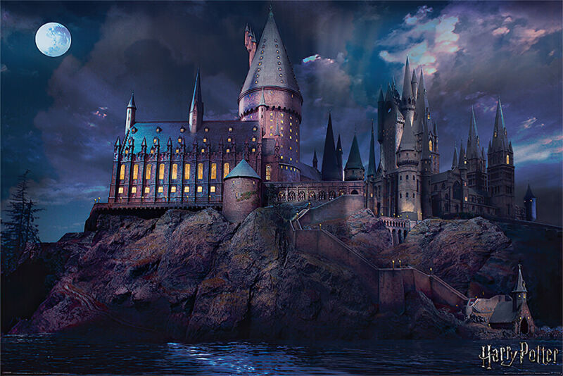 "HARRY POTTER - MOVIE POSTER / PRINT (HOGWARTS BY NIGHT) (SIZE: 36"" x 24"")"