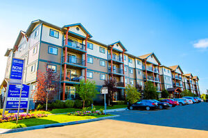 Great Incentives! 2 bdrm start at $1195! Edmonton Edmonton Area image 1