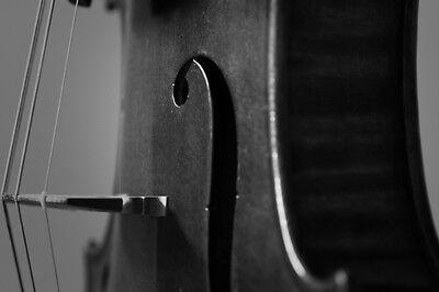 Affordable_Violins1