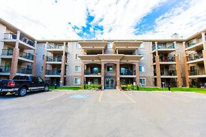 Great Incentives! 2 bdrm suites near WEM Edmonton Edmonton Area image 11