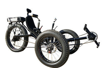Tire Trike (Fat Tad tire recumbent electric trike, electric tricycle, snow beach bicycle )