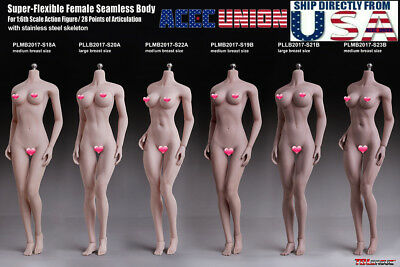 TBLeague PHICEN 1/6 Steel Skeleton Female Seamless MUSCULAR Figure Body U.S.A. - Female Skeleton