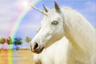 Unicorns and Rainbows   - CANVAS OR PRINT WALL ART - Unicorns And Rainbows