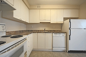 All-Inclusive 1 Bed 1 Bath on Margaret Ave! Kitchener / Waterloo Kitchener Area image 4