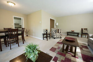 GREAT 3 Bedroom Apartment for rent MINUTES to DOWNTOWN!