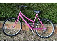 Ladies Mountain Bike - Bright Pink