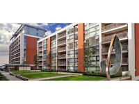 Lovely Modern 1 bed apartment in Royal Docks E16 with gym, sauna, business centre