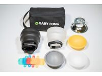 Gary Fong Fashion & Commercial Lighting Kit includes Chrome Dome