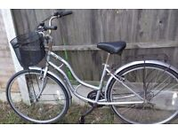 Town and country shopper bike