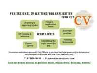 FREE CV Review/ CV Writing/ Job Application