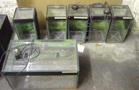 Invertebrate Tanks x Seventeen And Shelves x Four