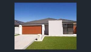SNAP ME UP Canning Vale Canning Area Preview