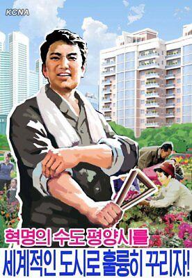 North Korea Original Propaganda  Lets Develop Pyongyang    4X6