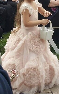 Blush Pink Flower Girl Pageant Princess Dress Best Fairy Dust Wishes NWT Size 4