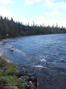 Cabin Lot Forsale - North Harbour Pond, Goobies NL