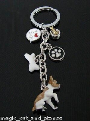 Schlüsselanhänger, kleiner Chihuahua, Hund, Dog, Schlüsselring, + 4 Charms Nr.1 ()