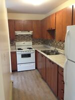 Renovated Two Bedroom Downtown! Heated, Washer, Dryer Included!