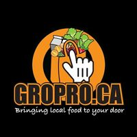 GROPRO Grocery Delivery