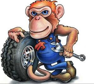 FULLY LICENSED AUTOMOTIVE MOBILE MECHANIC IF NEEDED