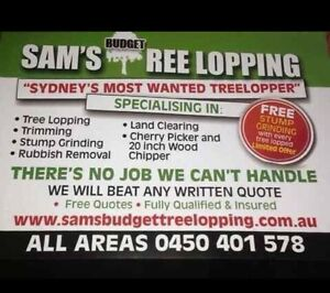 SAMS BUDGET TREE LOPPING Bankstown Bankstown Area Preview