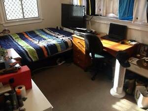 Room for rent $145/per week in St. Lucia! St Lucia Brisbane South West Preview