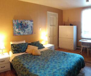 1 4- 30 déc / 3 1/2 (#6) 2 chambres/meublé/équipé/Métro Papineau