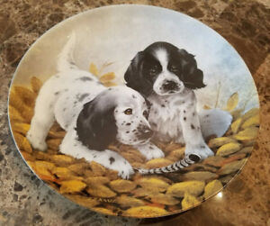 Erwin Knowles 1989 Collector Plate - Fine Feathered Friends - En