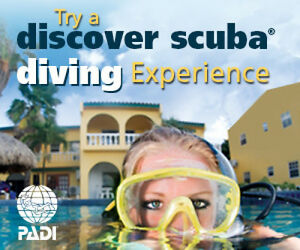 Try Scuba Diving Only $49