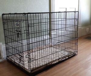 Dog Kennel and mat